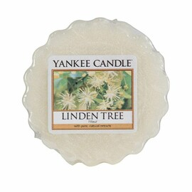 Linden Tree - Tart