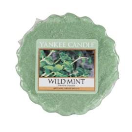 Wild Mint - Tart