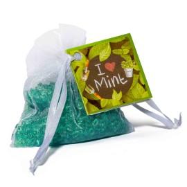 I Love Mint - Mini Resinas Perfumadas