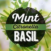 Antimosquitos Mint, Citronella & Basil